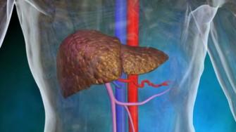 Irradiation stéréotaxique des tumeurs hépatiques : une nouvelle arme thérapeutique ?