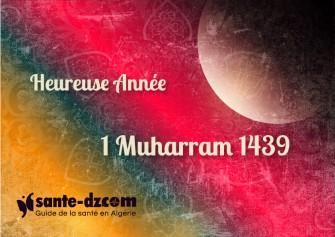 Heureuse Année Musulmane 1439