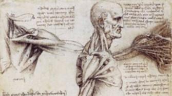 Exposition de dessins d'anatomie à la faculté de Tizi Ouzou