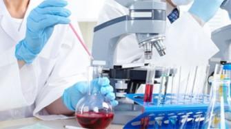 Réunion des directeurs de laboratoires de recherche à l'USTHB