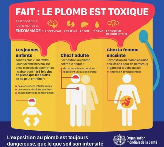 Intoxication au plomb : Dangers et prévention