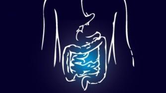 Synthèse de la 7° Journée de GastroEntérologie