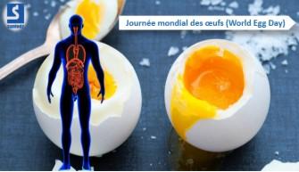Journée mondiale de l'œuf- L'œuf, source des protéines