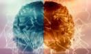Découverte Neuroscience: Comment pourrait-on guérir d'une paralysie suite à un AVC